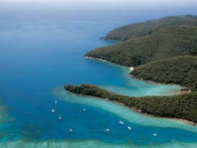 Butterfly Bay - Hook Island - Accommodation Rockhampton