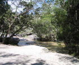 Davies Creek National Park and Dinden National Park - Accommodation Rockhampton