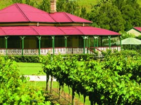 OReillys Canungra Valley Vineyards - Accommodation Rockhampton