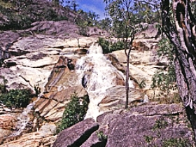 Emerald Creek Falls - Accommodation Rockhampton