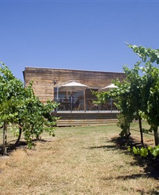 Shantell Vineyard - Accommodation Rockhampton
