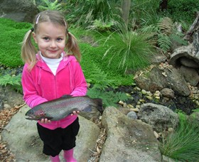 Rhyll Trout & Bush Tucker Farm