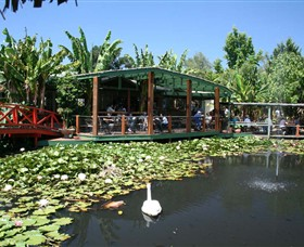 Blue Lotus Water Garden - Accommodation Rockhampton