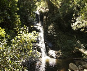 Macquarie Pass National Park - Accommodation Rockhampton