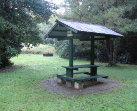 Pine Creek State Forest - Accommodation Rockhampton