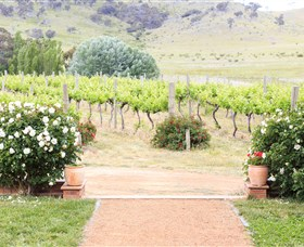 Brindabella Hills Winery - Accommodation Rockhampton