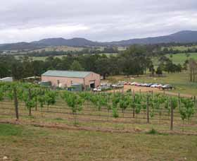 Villa d Esta Vineyard - Accommodation Rockhampton