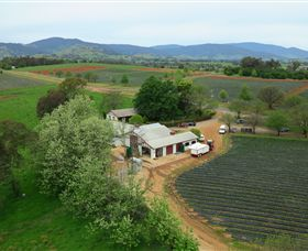 Schmidts Strawberry Winery - Accommodation Rockhampton