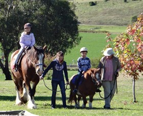Bathurst Farm Experience - Accommodation Rockhampton