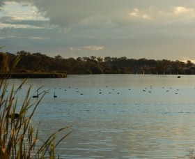 Lake Inverell Reserve - Accommodation Rockhampton