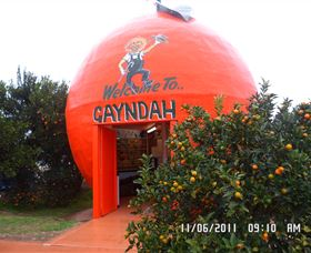 Gayndahs Big Orange - Accommodation Rockhampton