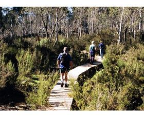 Hume and Hovell Walking Track - Henry Angel Trackhead - Accommodation Rockhampton