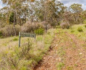 Old Mountain Road Walking Track - Accommodation Rockhampton
