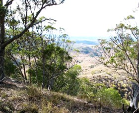 Boat Mountain Conservation Park - Accommodation Rockhampton