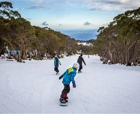 Mt Baw Baw Alpine Resort - Accommodation Rockhampton