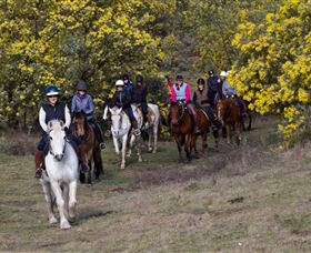 Burnelee Excursions on Horseback - Accommodation Rockhampton