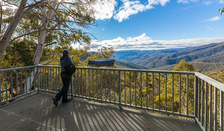 Wallace Creek lookout