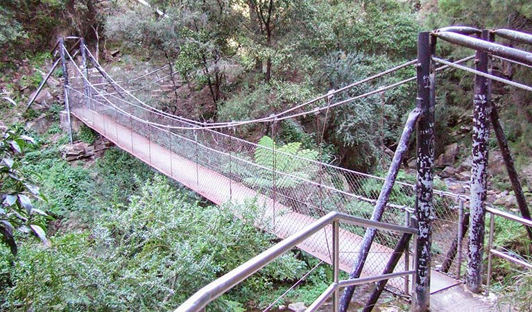 Jenolan River walking track - Accommodation Rockhampton