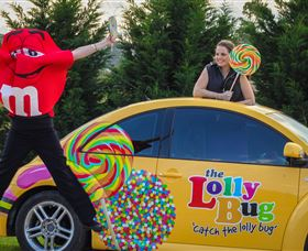 The Lolly Bug - Accommodation Rockhampton