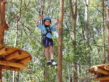 TreeTops Newcastle - Accommodation Rockhampton