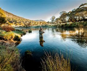 Fly Fishing Tumut - Accommodation Rockhampton