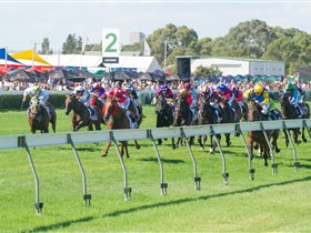 Morphettville Racecourse - Accommodation Rockhampton