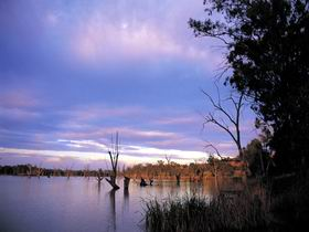 Loch Luna Game Reserve and Moorook Game Reserve - Accommodation Rockhampton