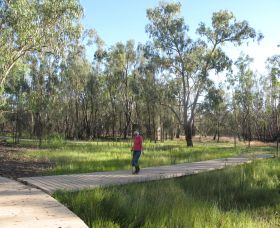 Ben Scott Memorial Bird Trail - Accommodation Rockhampton