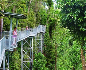 Mamu Tropical Skywalk - Accommodation Rockhampton