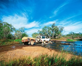 Rinyirru Lakefield National Park CYPAL - Accommodation Rockhampton