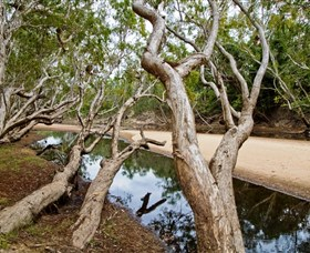 Oyala Thumotang National Park CYPAL - Accommodation Rockhampton