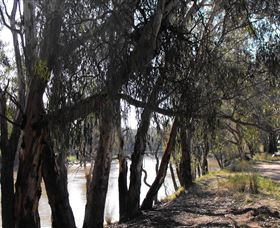 Mia Forest Drives Narrandera - Accommodation Rockhampton
