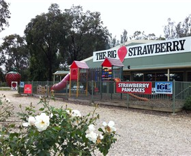 The Big Strawberry - Accommodation Rockhampton