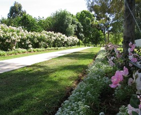 Barooga Botanical Gardens - Accommodation Rockhampton