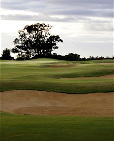 Black Bull Golf Club - Accommodation Rockhampton