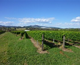 Hedberg Hill Wines - Accommodation Rockhampton
