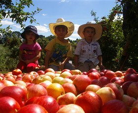 Bonny Glen Fruits - Accommodation Rockhampton