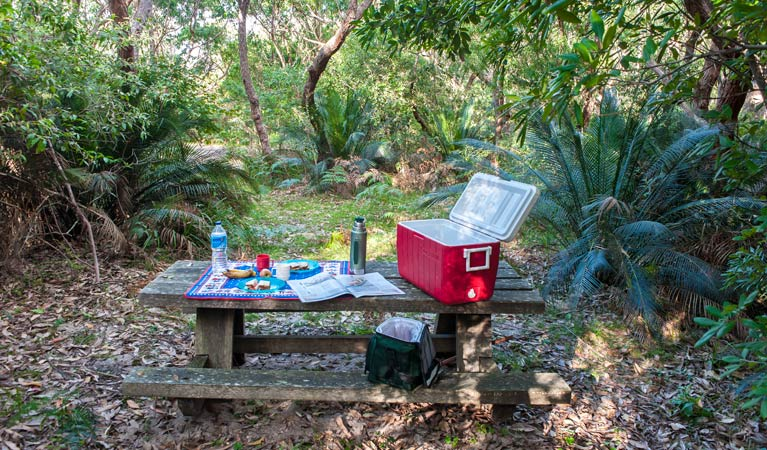 Little Llangothlin picnic area - Accommodation Rockhampton