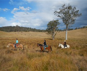Chapman Valley Horse Riding - Accommodation Rockhampton
