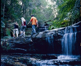 South Lawson Waterfall Circuit - Accommodation Rockhampton