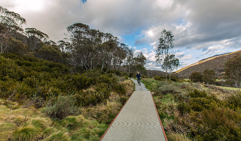 Thredbo Valley track - Accommodation Rockhampton