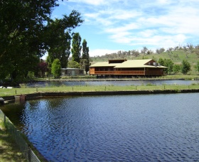 Gaden Trout Hatchery - Accommodation Rockhampton