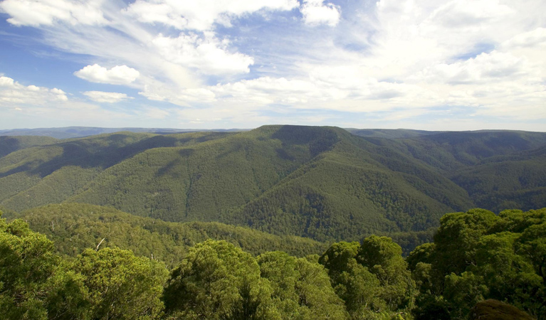 Barrington Tops National Park - Accommodation Rockhampton