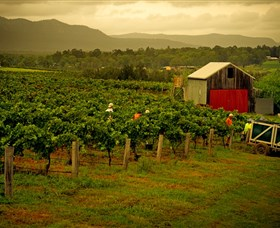 Around Hermitage Wine and Food Trail Hunter Valley - Accommodation Rockhampton