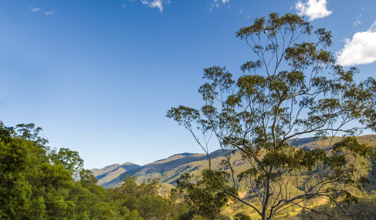 Woko National Park - Accommodation Rockhampton