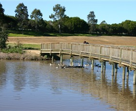 Sale Common Wetlands - Accommodation Rockhampton