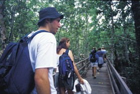 Bellthorpe National Park - Accommodation Rockhampton