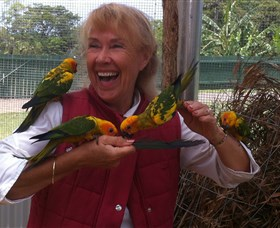 Maleny Botanic Gardens  Bird World - Accommodation Rockhampton