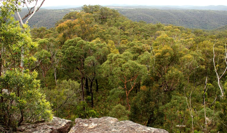 Mount Olive lookout - Accommodation Rockhampton
