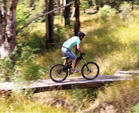 The Steps Mountain Bike Park - Accommodation Rockhampton